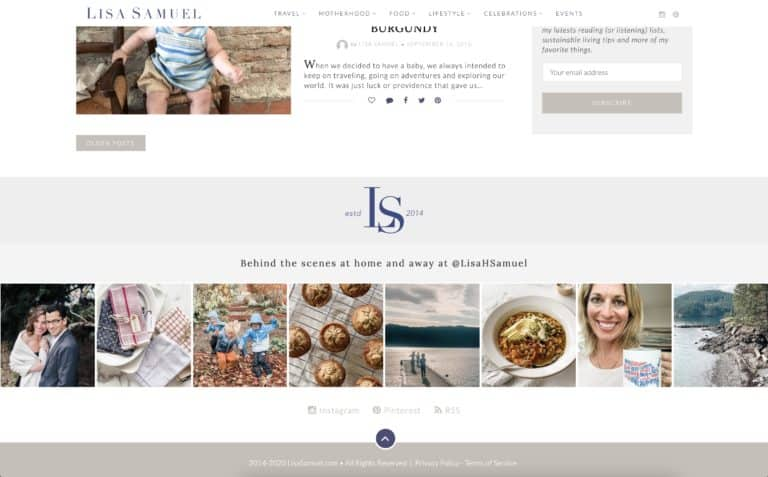 Lisa Samuel Blog Design Gallery 3